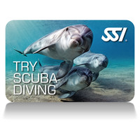 Try Scuba (Piscina) / Try Scuba Diving (Acqua libera)